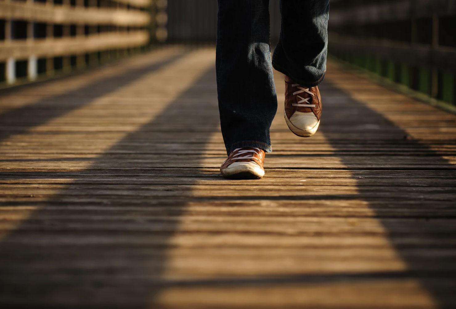 TODO lo que debes saber sobre las meditation walks
