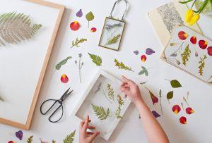 DIY: Cómo hacer un hermoso cuadro con flores secas