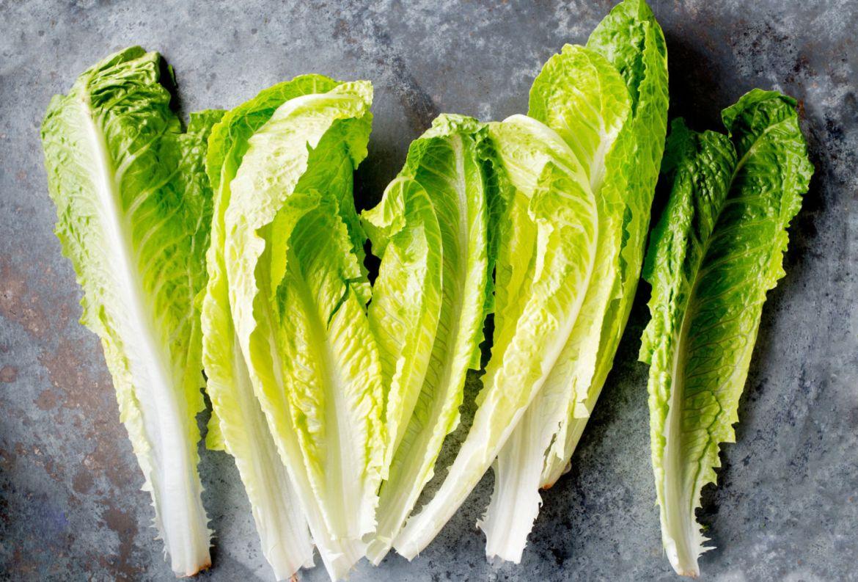 Estas verduras son ideales para volver a cultivar ¡en un frasco con agua! - lechuga-romana
