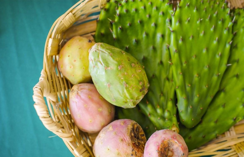 ¿Conoces estos 6 superfoods mexicanos? - nopal