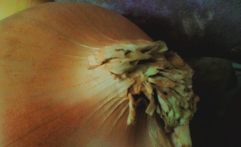 Convierte tu cocina en un estudio de arte con estos tips de fotografía - cebolla-luz-fotografia