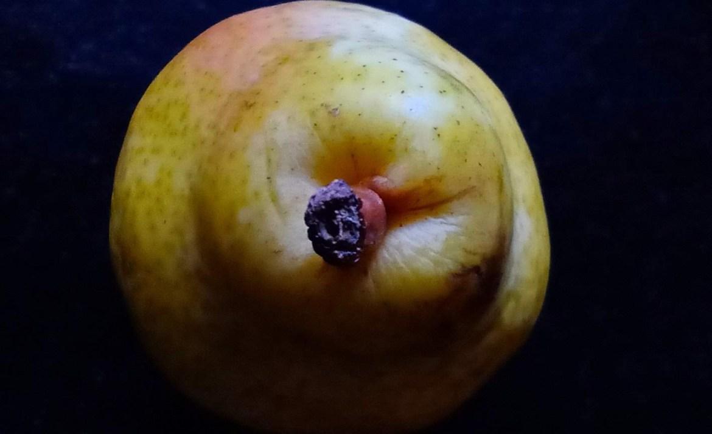 Convierte tu cocina en un estudio de arte con estos tips de fotografía - fruta-cocina-fotografia