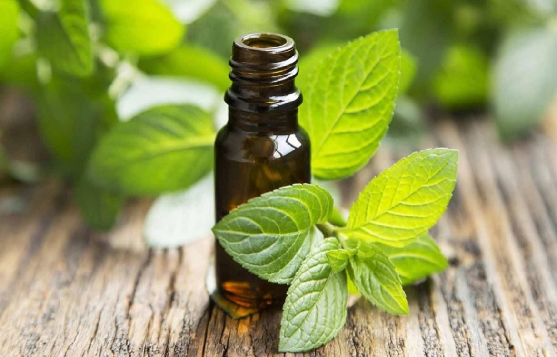Pruebas estos aceites naturales que harán maravillas en tu cara - menta