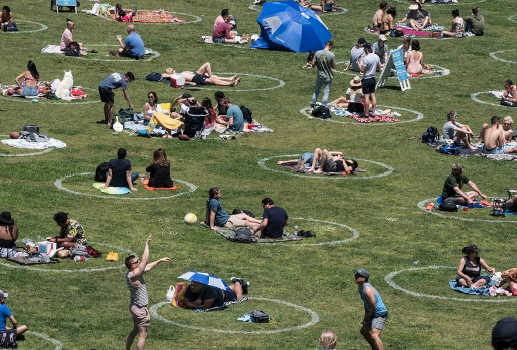 Cómo organizar un picnic seguro