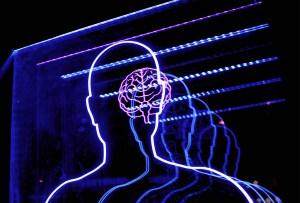 ¿Sabías que tenemos 3 cerebros? Te lo explicamos
