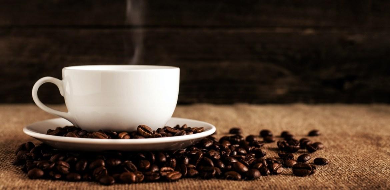 Catar café es muy fácil y aquí te enseñamos todo lo que debes saber - diseno-sin-titulo-15-2