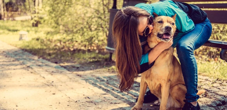 Enseñanzas espirituales que te da tu perro y no lo sabías - diseno-sin-titulo-78-1