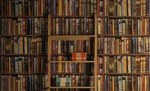 Editor's Pick: Las recomendaciones de libros que deberías leer en noviembre