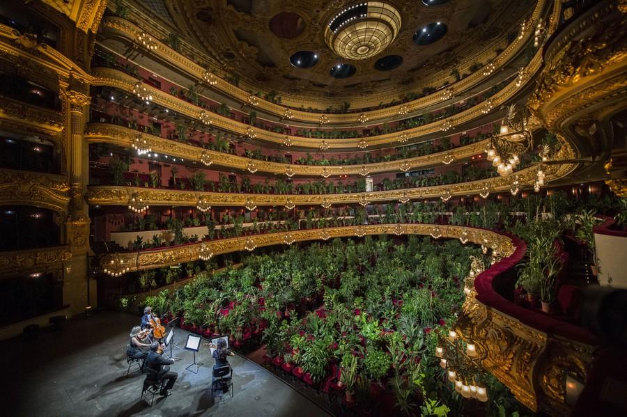 Las fotos más icónicas del 2020, memorias que te encantarán - concierto-plantas