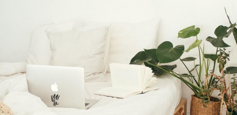 Beneficios de tener plantas cerca en tu área de home office - diseno-sin-titulo-14-2
