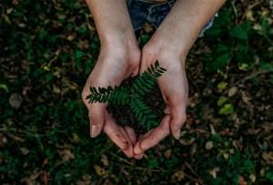 Conoce Ecolana: tu aliado para convertirte en un ciudadano verde