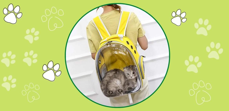 Gadgets para viajar con tus mascotas ¡Te harán la vida más fácil! - sabrina-43