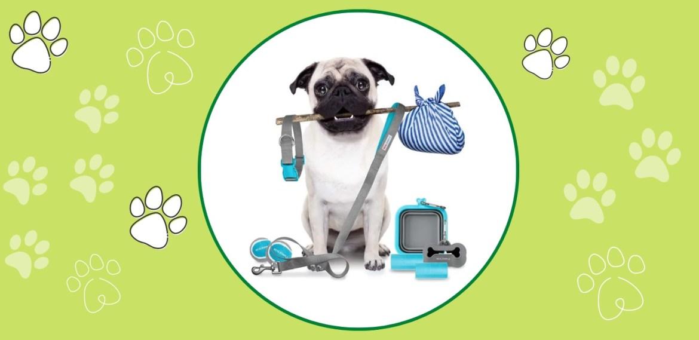 Gadgets para viajar con tus mascotas ¡Te harán la vida más fácil! - sabrina-44