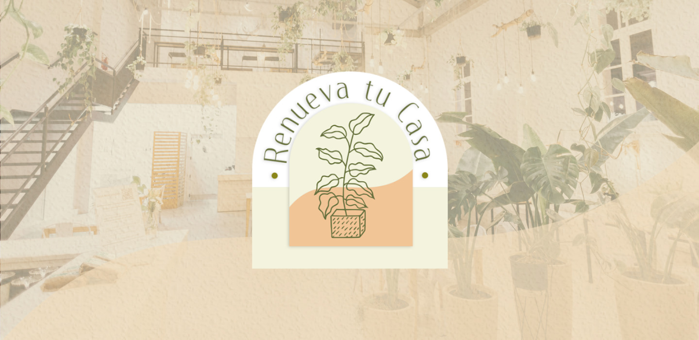 Plantas que atraen buena energía según el Feng Shui