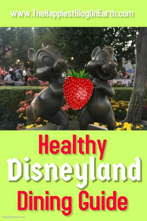 Healthy food at Disneyland! Yes, you can find healthy snacks and keep up your healthy eating even when at Disneyland. Here's our guide to get you started.  #DisneylandFood #DisneylandTips #HealthyDisneyland