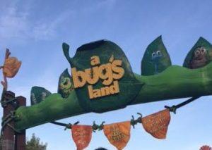 a bug's land entrance
