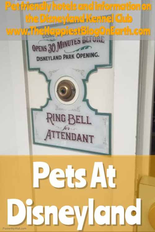 Pets at Disneyland. Practical advice for bringing your pet along to Disneyland.
