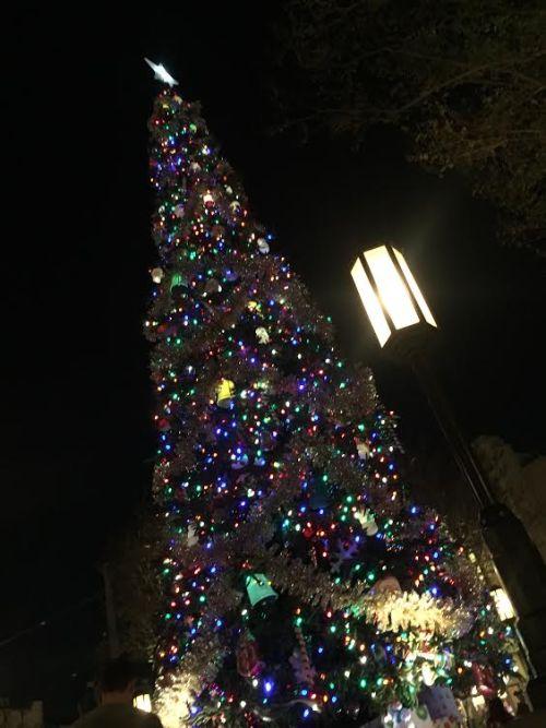 Christmas Tree California Adventure