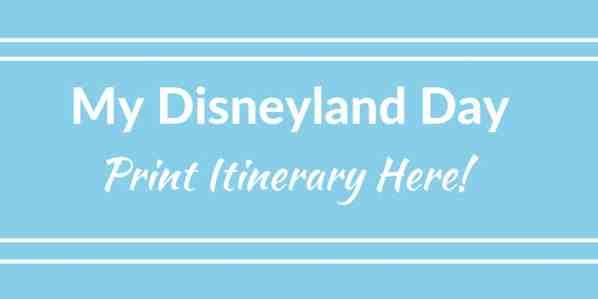 My Disneyland Day