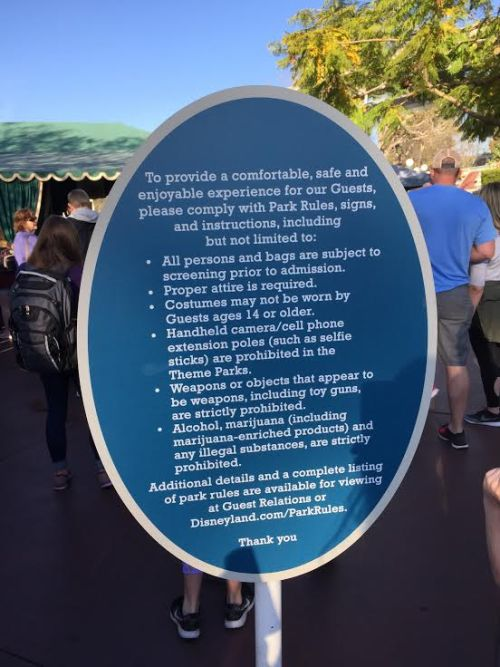 Disneyland Banned items