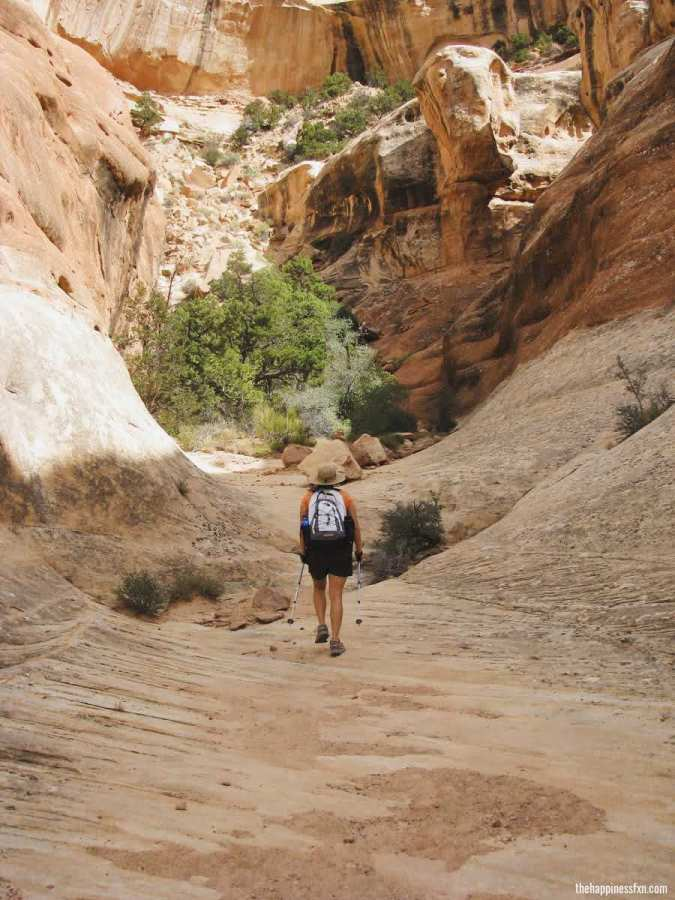 hiking-to-druid-arch-needles-district