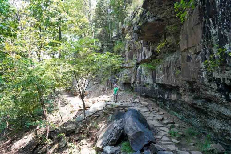 mount-nebo-state-park-hiking-trails