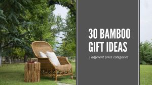 30 Bamboo Gift Ideas – 3 different price points