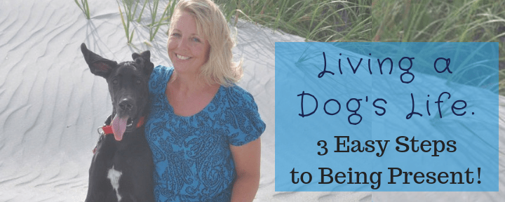 Living a Dog's Life. 3 Easy Steps to Being Present!