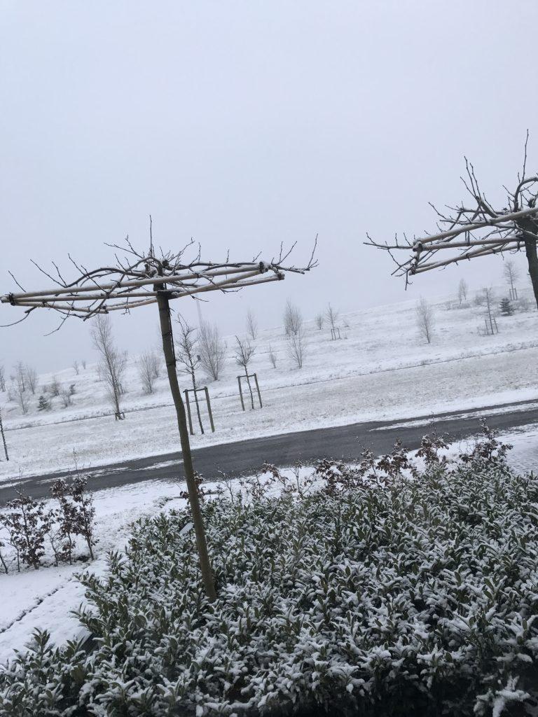 Alweer sneeuw...van mij hoeft het niet meer eigenlijk...
