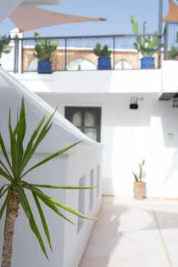 Rooftop Dachterrasse Rodamon Hostel