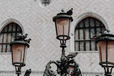 Tauben Laternen Dogenpalast