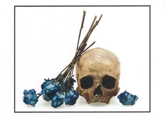 Human Skull and Blue Roses. David Bailey, 2008. © David Bailey