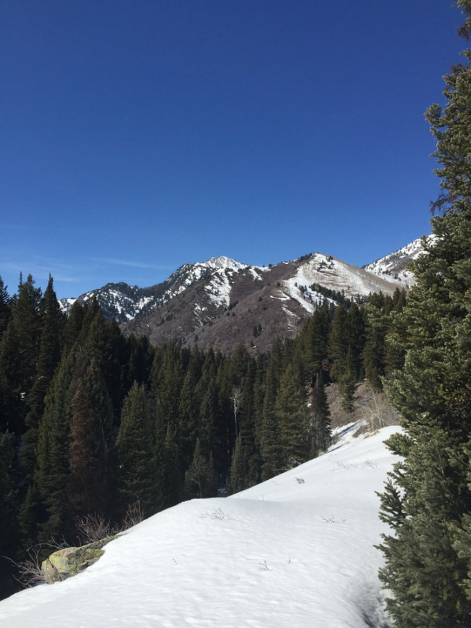 SnowshoeingAdventure-17web