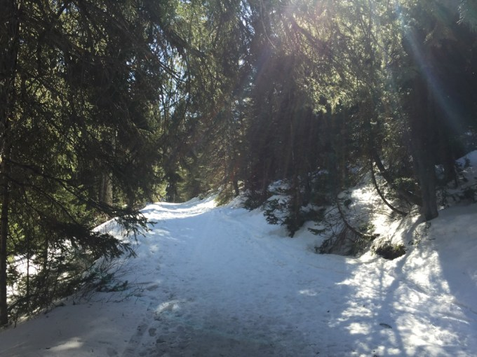 SnowshoeingAdventure-26web