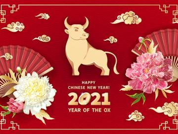 OX new year 2021