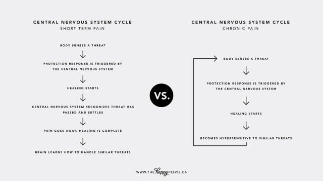 Short term vs. long term pain diagram