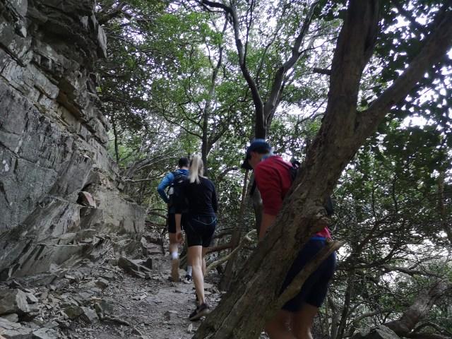Tranquility Cracks Hike