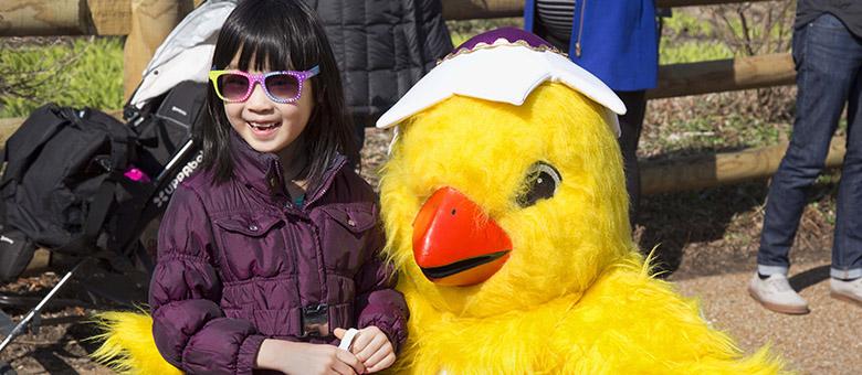 Easter_website_0.jpg