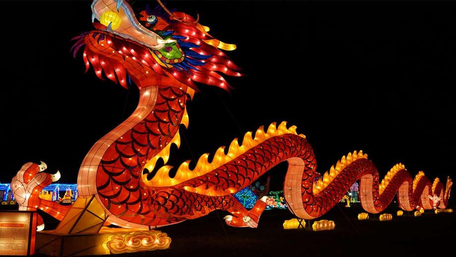 1519932579-Dragon-Lights-tickets.jpg
