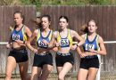 NEWS FROM HAVERING AC