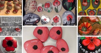 Veterans' charity calls on public to paint a poppy pebble to commemorate Remembrance Day