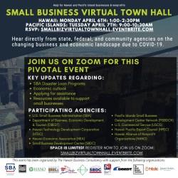 virtual hall town biz