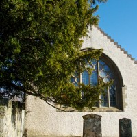The Fortingall Yew:  symbol of eternity
