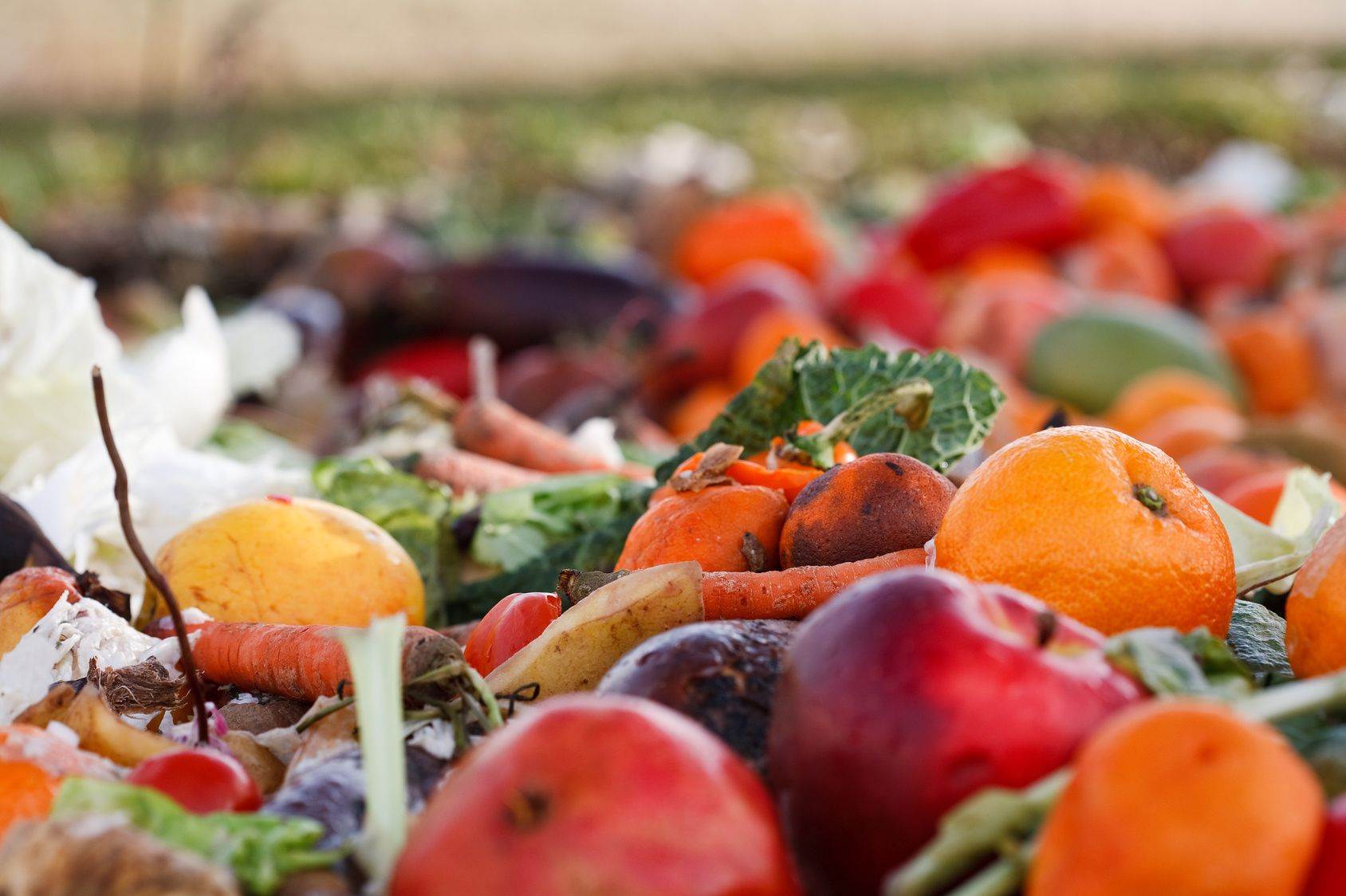 CBC Radio Interview: HEAL's Paul van der Werf on Food Waste