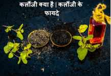 कलौंजी क्या है | कलौंजी के फायदे | Kalonji Ke Fayde Aur Upyog In Hindi