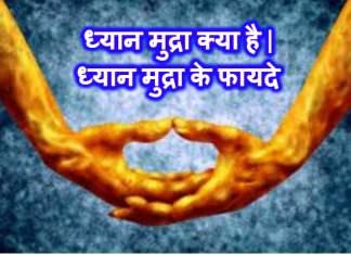 ध्यान मुद्रा क्या है | ध्यान मुद्रा के फायदे | Dhyana Mudra Benefits In Hindi