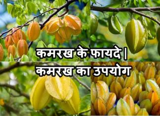 कमरख के फायदे | कमरख का उपयोग | Kamrakh Khane Ke Fayade In Hindi