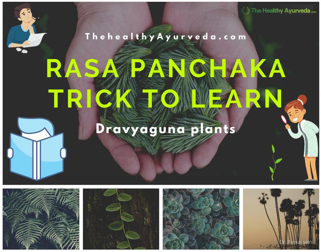 Rasa panchaka trick dravya guna plants