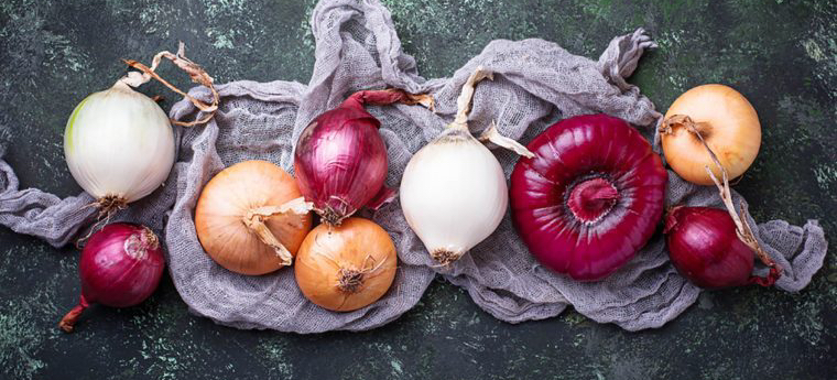00_Onions_Eating-This-One-Type-of-Onion-Is-the-Best-Way-to-Stave-Off-Cancer-Science-Says_737922031-Yulia-Furman-760x506.jpg