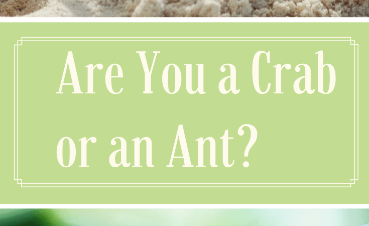 Are You a Crab or an Ant?